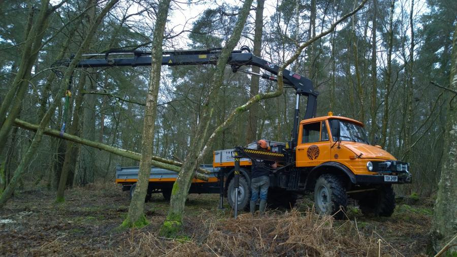 unimog-working-in-woodland.jpg